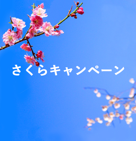 s桜キャンペーン
